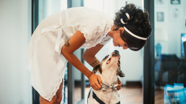 Bride kiss a dog with bowtie